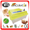 Automatic High Quality Multifunctional Ostrich Egg Incubator for Sale