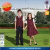 Fashionable School Uniform for Girls and Boys