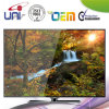 Professional Manufacturer Slim HD 42 Inch LED TV