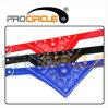 Wholesale Nylon Leather Triangle Bandana Metal Buckle Pet Dog Collar (PC-TN1001)