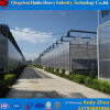 Aluminum Polycarbonate Sheet Greenhouse with Hydroponic Systems