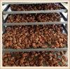Quality Dog Food Cat Food Pet Snacks/ Treat Meat Cubes (KI047)