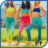 New Arrival Classic Women Leggings Two Gradient Color Sports Pants