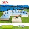 Combination Rattan Sofa Set (DH-697)