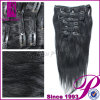 100% Human Hair Clip in Hair Extension