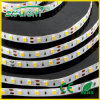 IP65 Waterproof SMD 2835 60LEDs LED Flexible Strip Light of Cool White