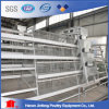 Automatic H Type Chicken Cage System