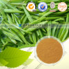 Natural Tp 30%Catechins Green Tea Extract 50% Tea Polyphenol