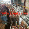 Steel Hot Rolling Mill for Rebar