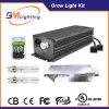 Double Output 630W Cdm CMH (ceramic metal halide) Double Lamp Ballast for Grow Kit