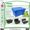 Plastic Crates for Agriculture Farm