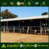 Low Cost Prefab Steel Strucure Cow Shed