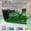 Methane Gas Biogas Gas Generator Set 200kw CE ISO
