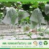 100% PP Spunbond Nonwoven Anti-UV Fabric Grape Fruit Bags