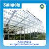 Hot Sale Muti-Span Glass Greenhouse for Potato