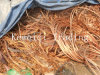 Factory Sales Millberry Copper Scrap Wire 99.9%