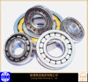 Cylindrical Roller Bearings (Nu1008)