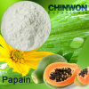 19. Papaya Enzyme Papain Powder