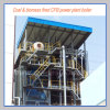 Biomass Fired Power Plant CFB Boiler (EP50T/H 6 MPA)