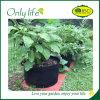Onlylife Movable Felt Durable Garden Planter Grow Bag