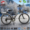 New 250W Cheap Electric City Road Bike with Conversion Kit