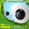 9MP Vr Fisheye Camera with SD&Audio