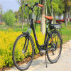 Rear Rack Battery 26′′ 250W City Electric Bicycle for Lady