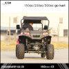 4X4 UTV Utility Vehicle 150cc/200cc/300cc Engine with 10inch Alloy Wheel