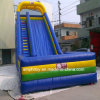Inflatable Kids Jungle Bouncer Combo with Slide