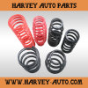 Hv-S19 Power Spring for Air Brake Chamber