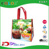 PP Non Woven Reuseable Foldable Shopping Promotion Gift Bag