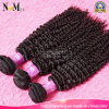 Top Quality Mongolian Curly Hair with Beautiful Packaging Boxes