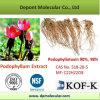 Podophyllum Extract, Podophyllotoxin 98%
