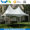 5X10m Double Peak Easy up Gazebo Tent for Backyard Party