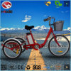 250W Electric Tricycle with Shimano Speed Kenda Tire