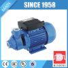 Copper Wire Clean Water Pump for Clean Water (0.55kw/0.75HP)