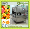 Apple Orange Lemon Pear Mango Peeling Machine