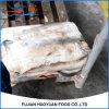 Frozen Food Blue Shark Belly