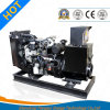Prime/Standby Use 12kw Yangdong Power Generator