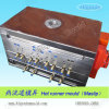 Plastic Injection Mold (HRD-H73)