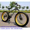Hot Sale Cheap Carbon Fat Tire Bike
