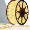 LED Strip Light with PU 220V for Indoor and Outdoor Lighting
