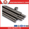 Factory Price Stainless Steel 304 316 Threaded Rod