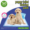 Super Absorbent Pet Puppy Training Wee Wee PEE Pads