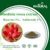 Rhodiola Rosea Extract Powder Rosavin