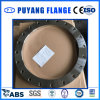 304L Dn600 Plate Flange Stainless Steel (PY0009)