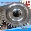 Hobbing & Carburizing Metal Large Spur Driving Precision Gears