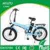 20 Inch Folding Mini Electric Fat Bike/Fat Tire Bike/Sand Beach E Bike