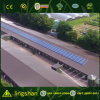 High Quality Standards Steel Breeder / Layer Poultry Farming
