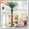 2015 China Manufacturer Decorative Artificial Palm Plants Trees Wholesale
